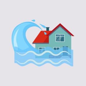 Property Restoration Services Mold Mitigation